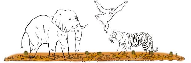 生物多様性の喪失