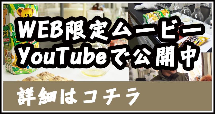 ウェブ動画のリンク